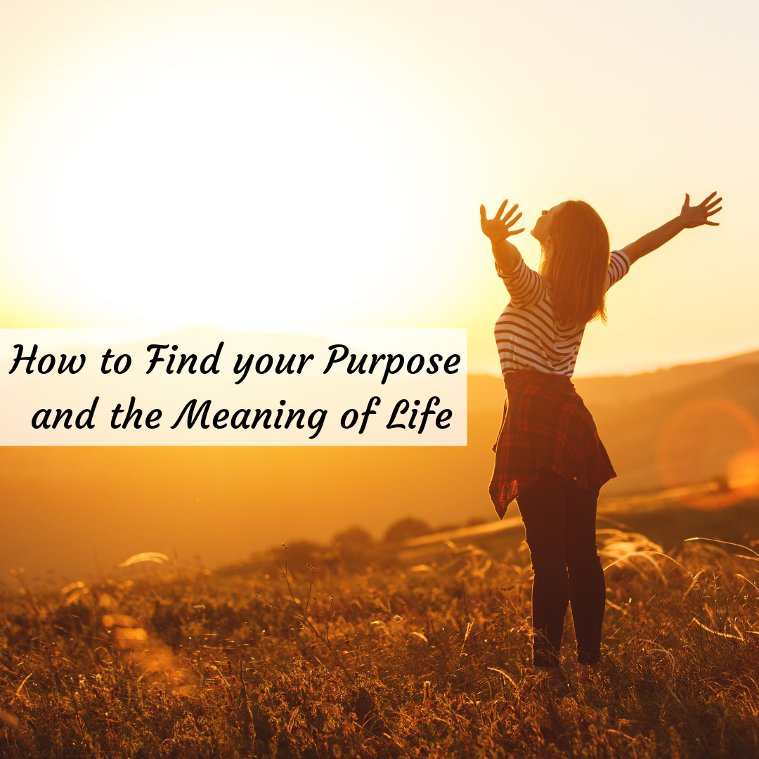 Find your Purpose and the Meaning of Life